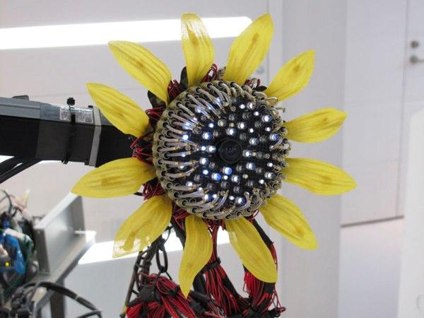 girasol robotico